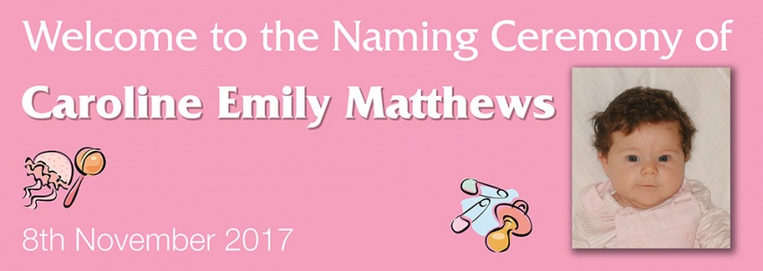 Naming Ceremony Banner Pink with toys